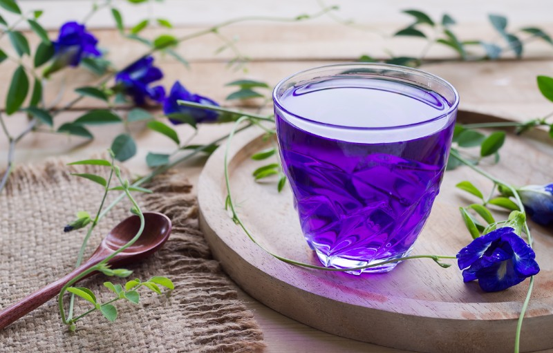 Butterfly Pea Flower Tea: Why It's Taking The World By Storm